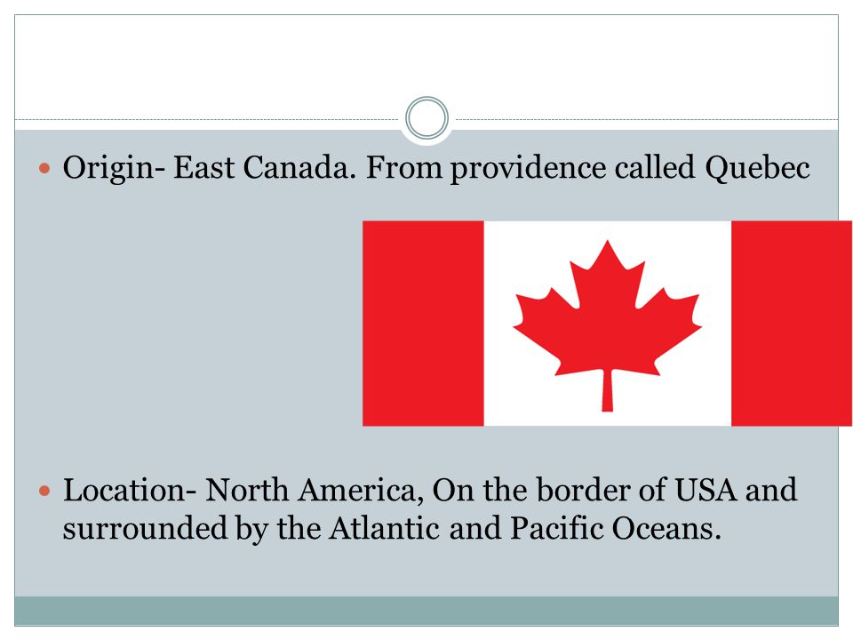 Origin- East Canada. From providence called Quebec