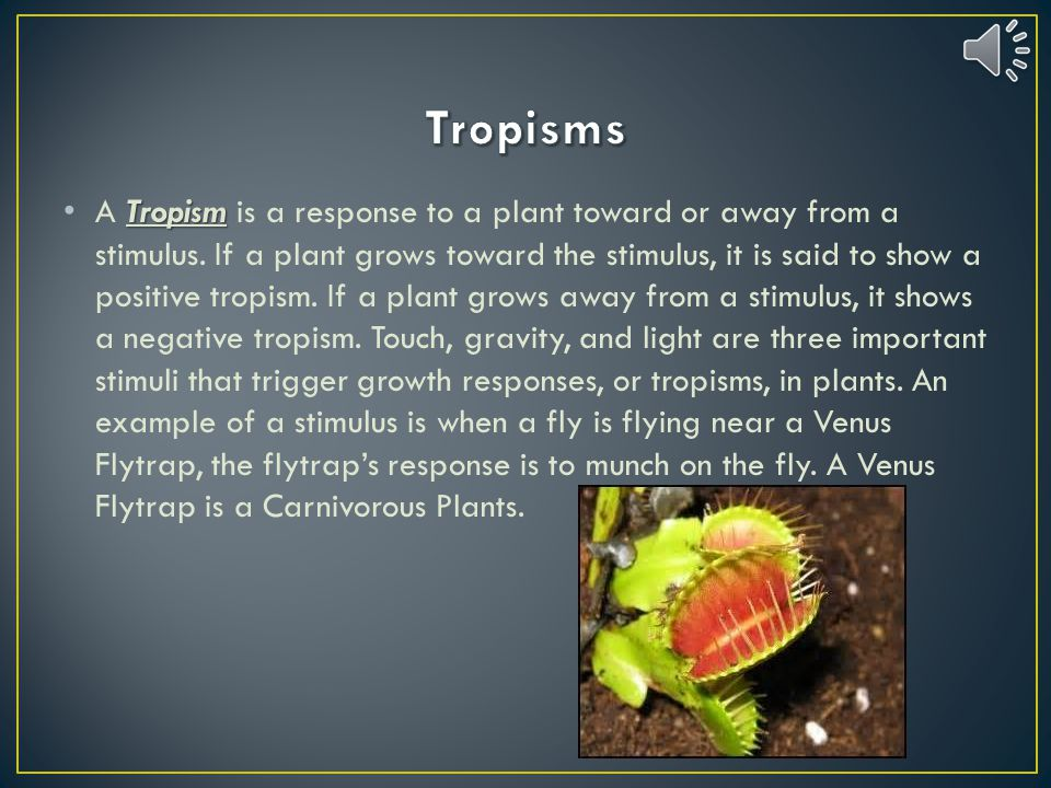 Define tropism and give two examples of asexual reproduction