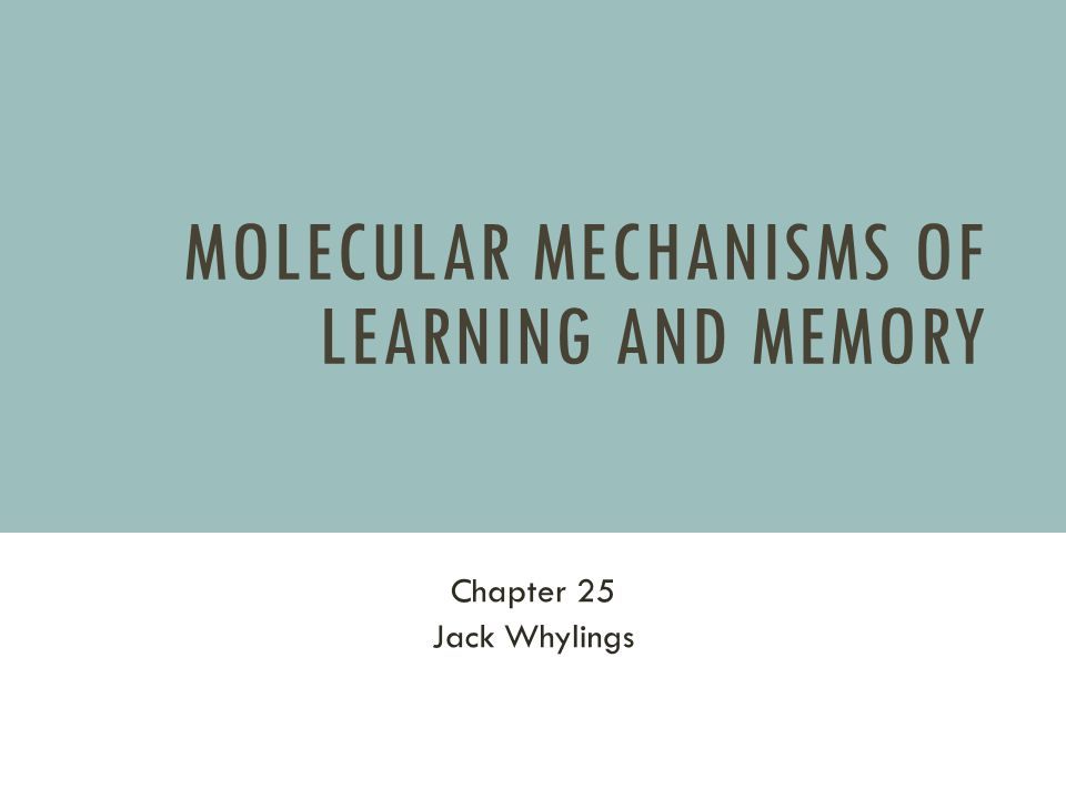 Molecular Mechanisms of Learning and Memory