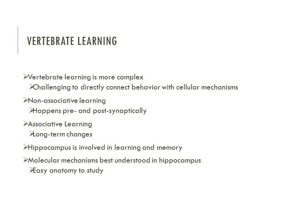 Vertebrate Learning Vertebrate learning is more complex