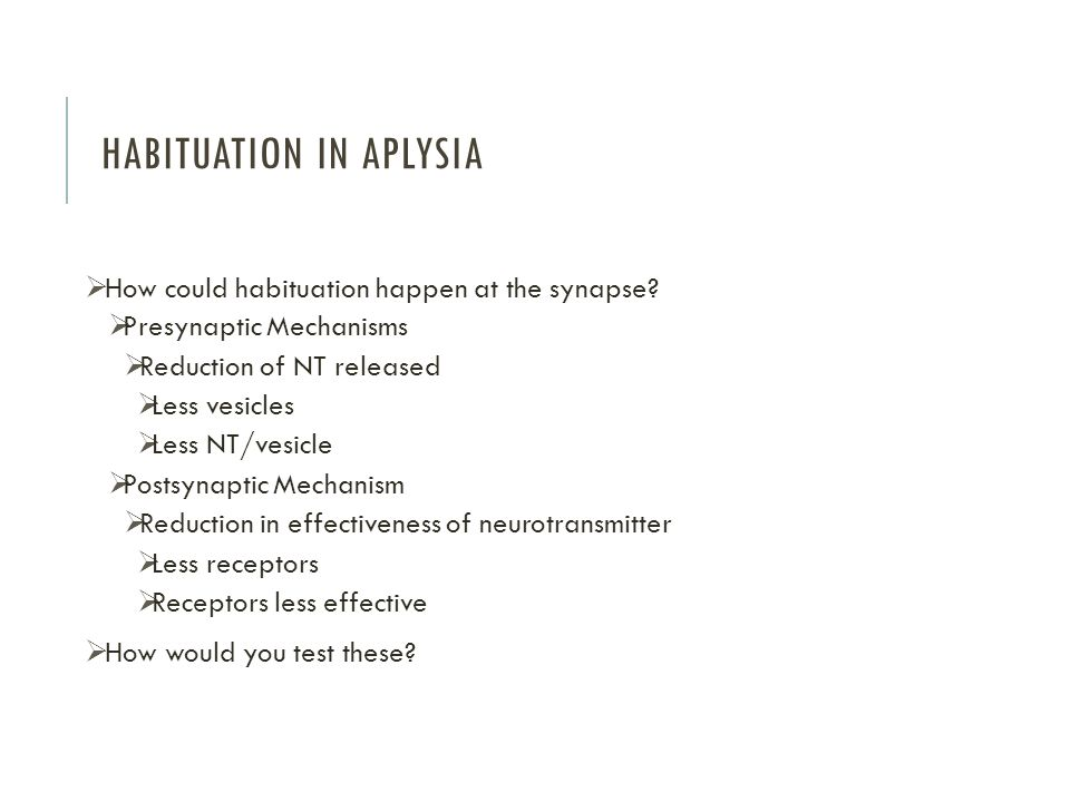 Habituation in Aplysia