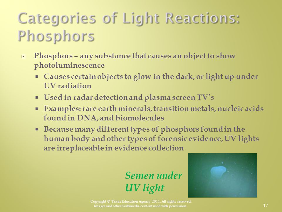 Categories of Light Reactions: Phosphors