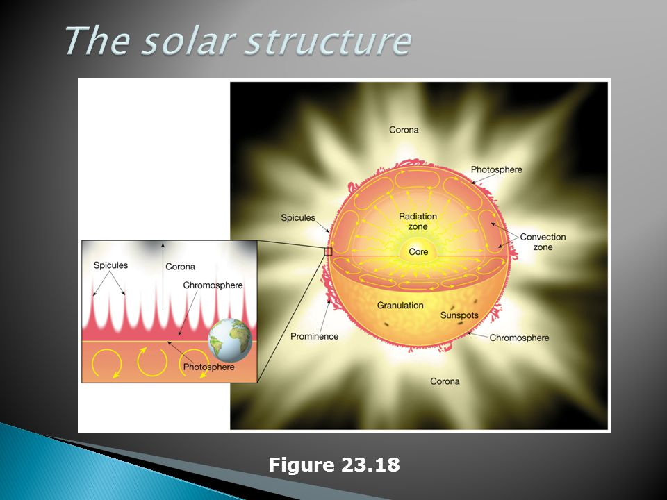 The solar structure Figure 23.18
