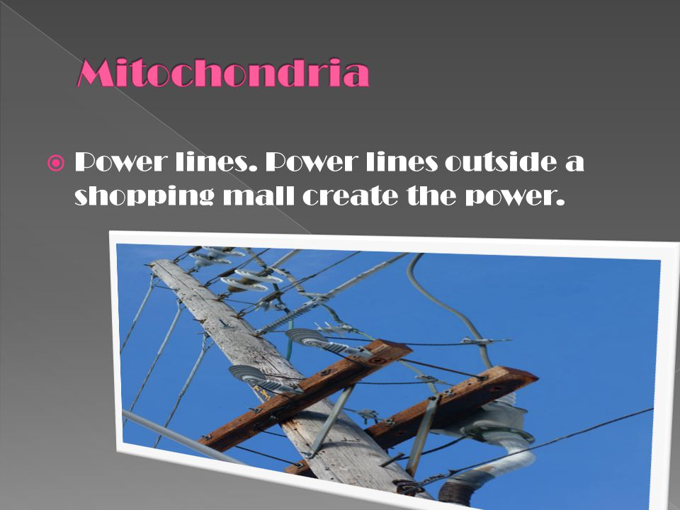 Mitochondria Power lines. Power lines outside a shopping mall create the power.