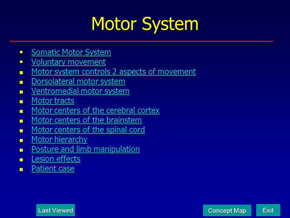 Motor System Somatic Motor System Voluntary movement