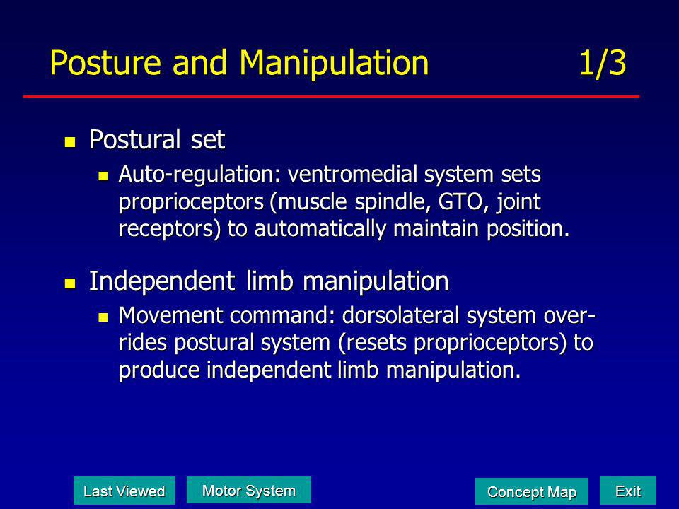 Posture and Manipulation 1/3