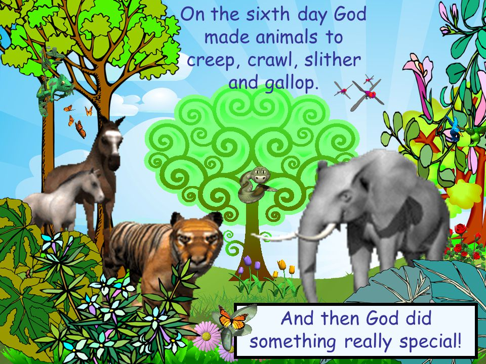 On the sixth day God made animals to creep, crawl, slither and gallop.