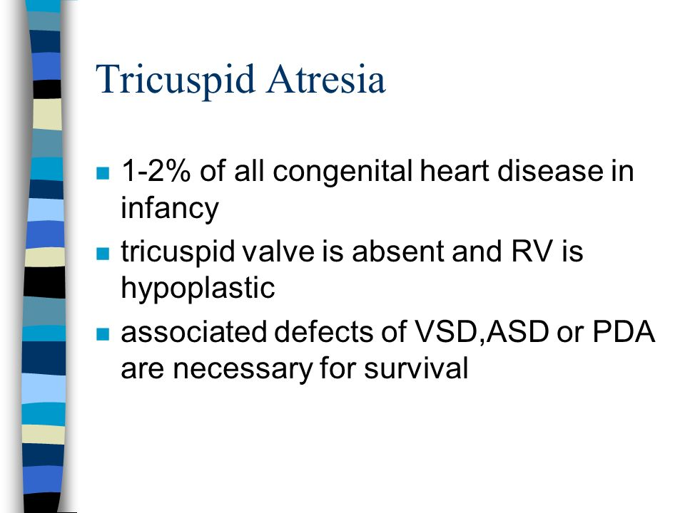Tricuspid Atresia 1-2% of all congenital heart disease in infancy
