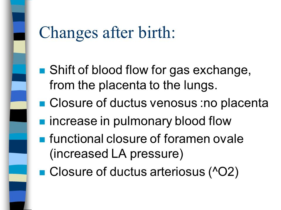Changes after birth: Shift of blood flow for gas exchange, from the placenta to the lungs. Closure of ductus venosus :no placenta.