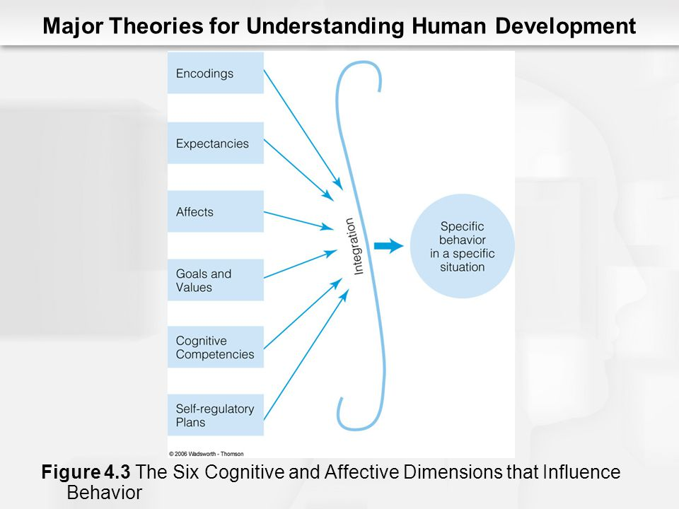 egans 3 stage counselling model The first four cognitive tools that egan proposes (somatic, mythic, romantic, and philosophical) mirror the characteristics and timing of piaget's stages of cognitive development (sensorimotor, pre-operational, concrete operational, formal operational.
