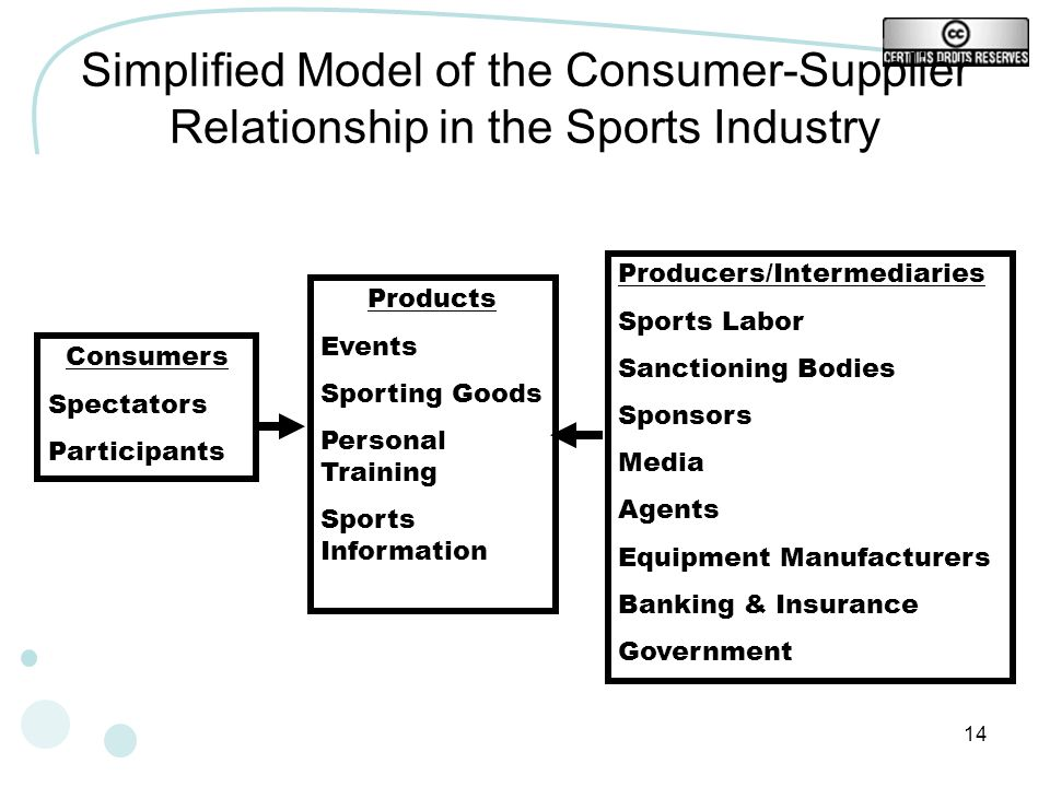 Simplified Model of the Consumer-Supplier Relationship in the Sports Industry