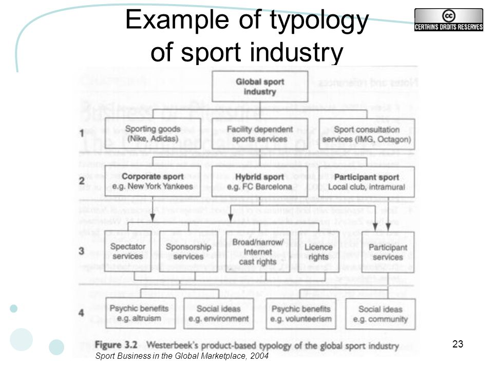 Example of typology of sport industry