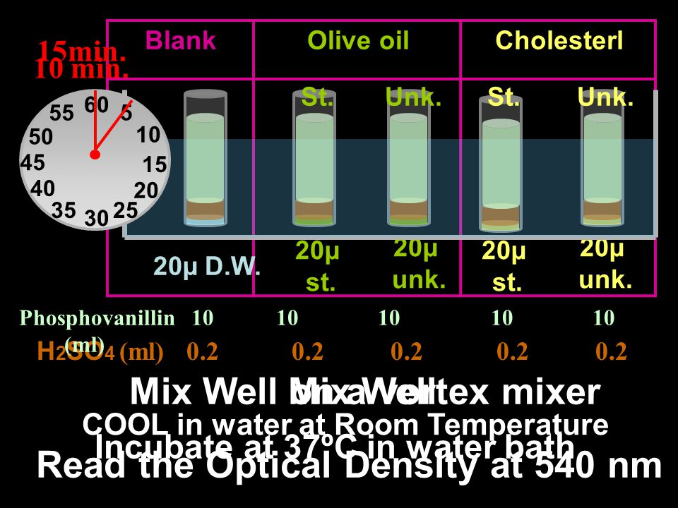 Mix Well on a vortex mixer Mix Well Read the Optical Density at 540 nm