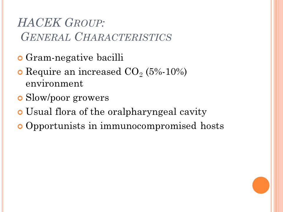 HACEK Group: General Characteristics