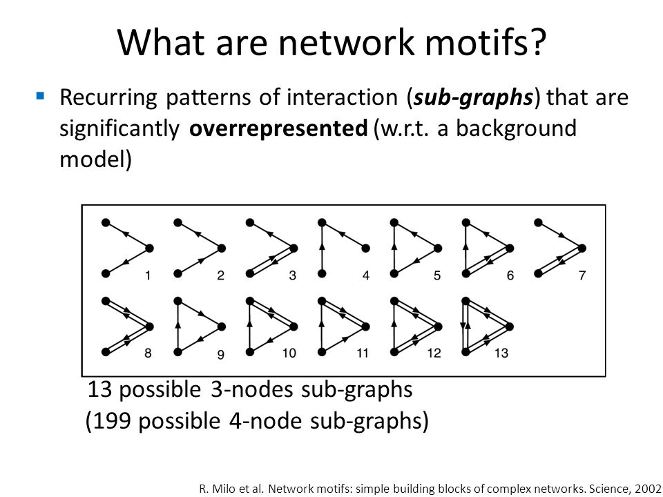 What are network motifs