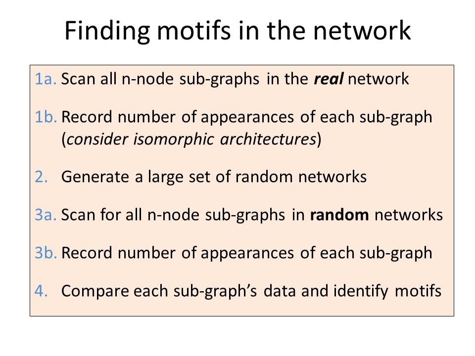 Finding motifs in the network