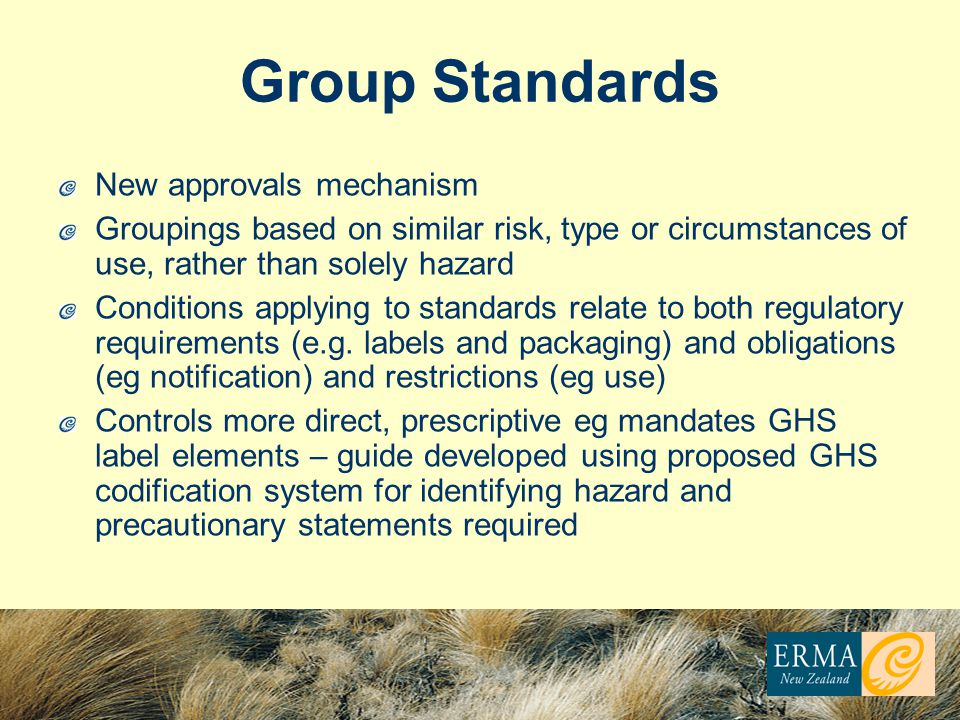 Group Standards New approvals mechanism