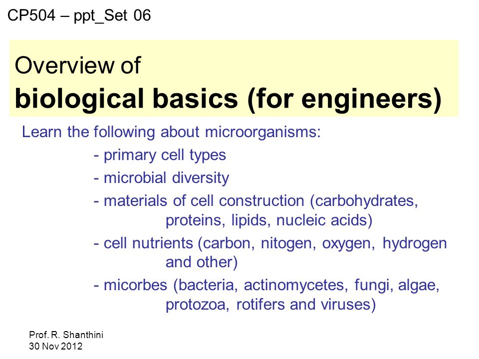 biological basics (for engineers)