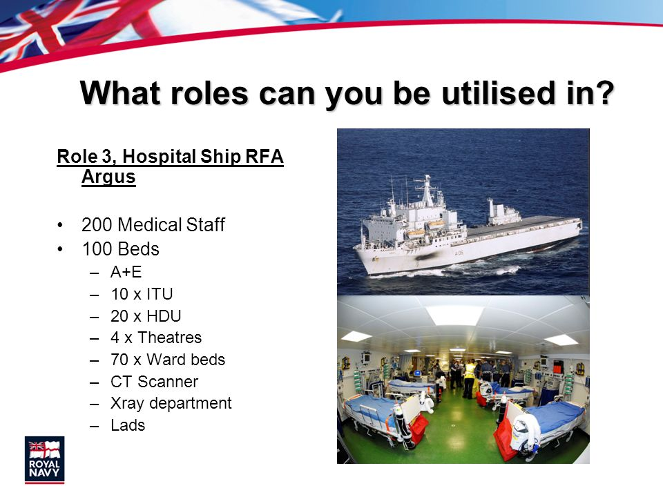 What roles can you be utilised in