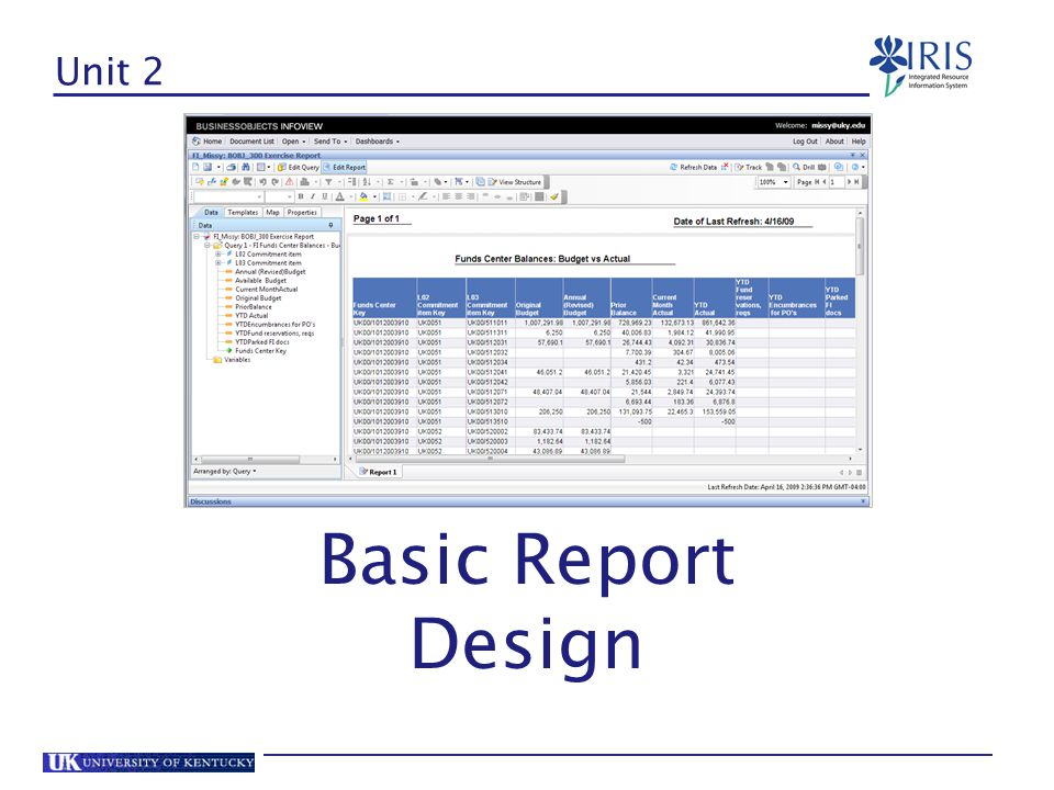 Unit 2 Basic Report Design