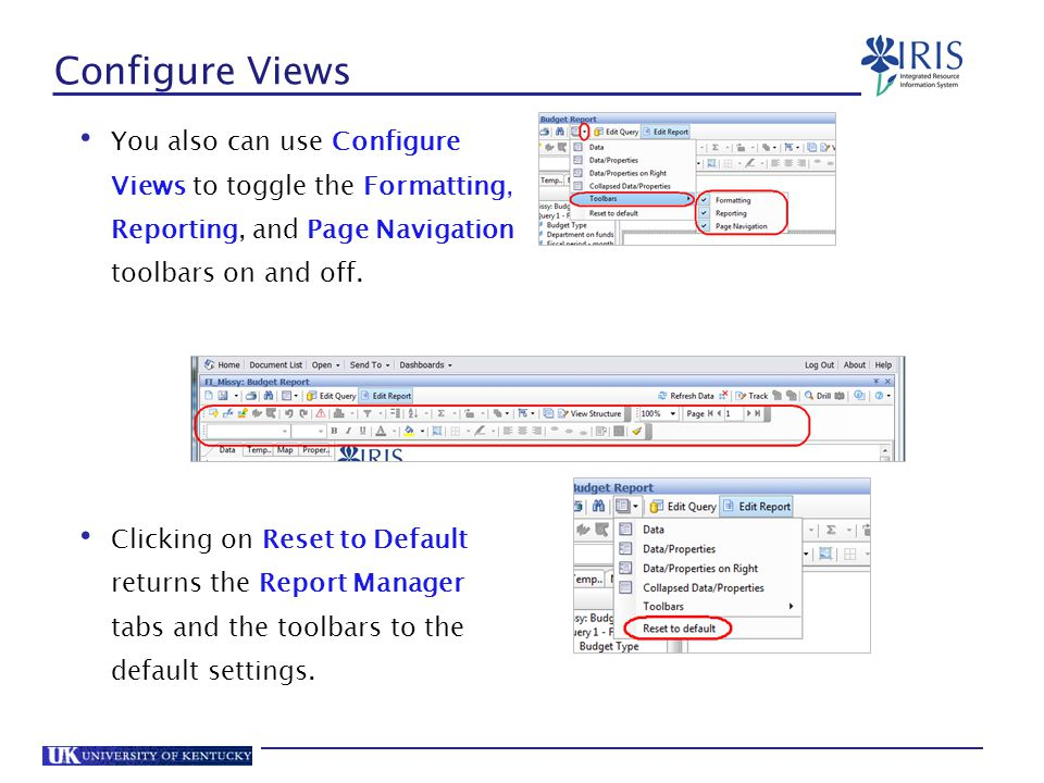 Configure Views You also can use Configure Views to toggle the Formatting, Reporting, and Page Navigation toolbars on and off.