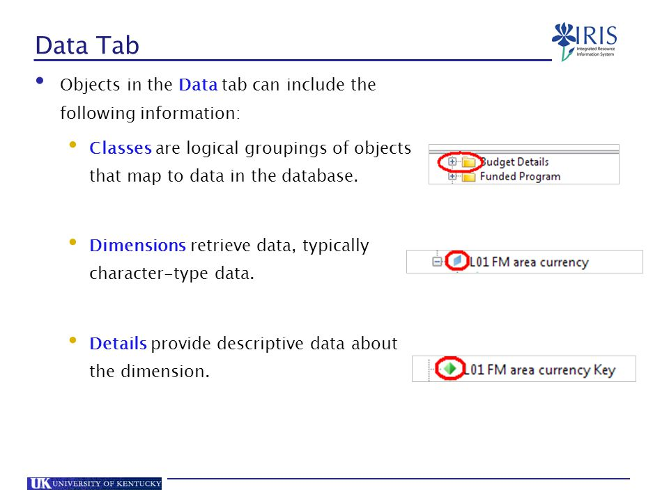 Data Tab Objects in the Data tab can include the following information: Classes are logical groupings of objects that map to data in the database.