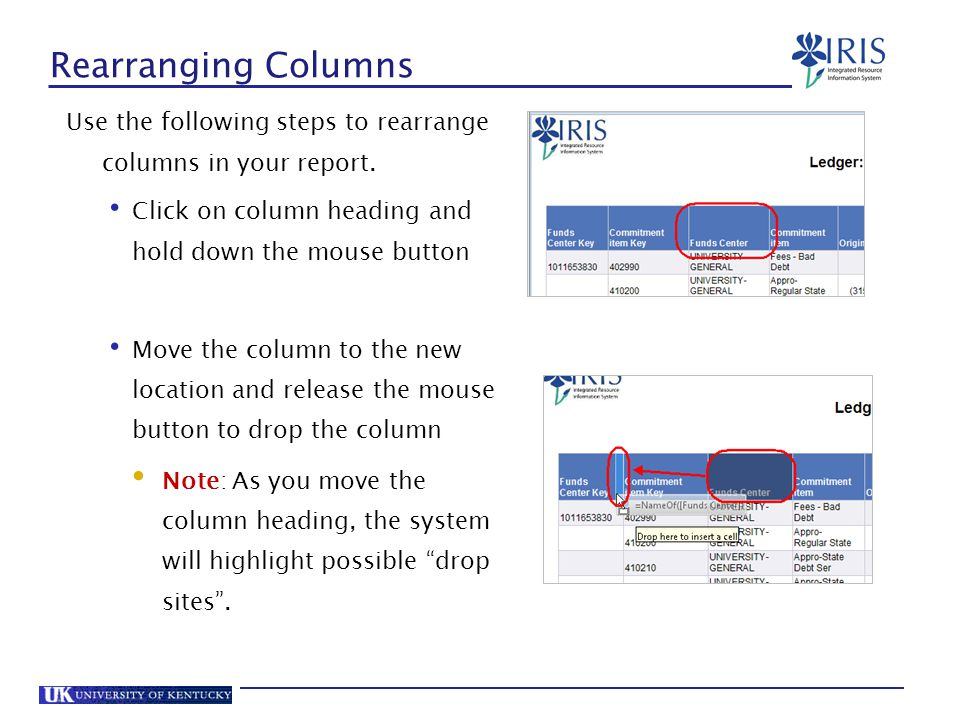 Rearranging Columns Use the following steps to rearrange columns in your report. Click on column heading and hold down the mouse button.