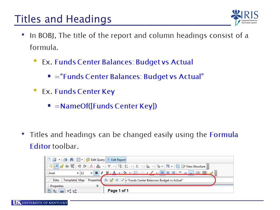Titles and Headings In BOBJ, The title of the report and column headings consist of a formula. Ex. Funds Center Balances: Budget vs Actual.