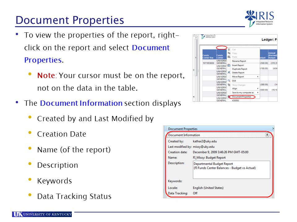 Document Properties To view the properties of the report, right-click on the report and select Document Properties.