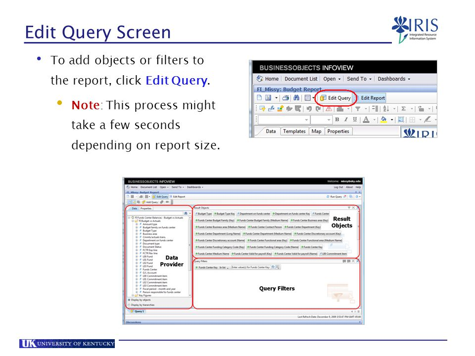 Edit Query Screen To add objects or filters to the report, click Edit Query.