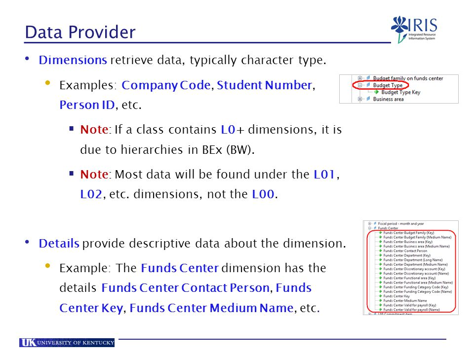Data Provider Dimensions retrieve data, typically character type.