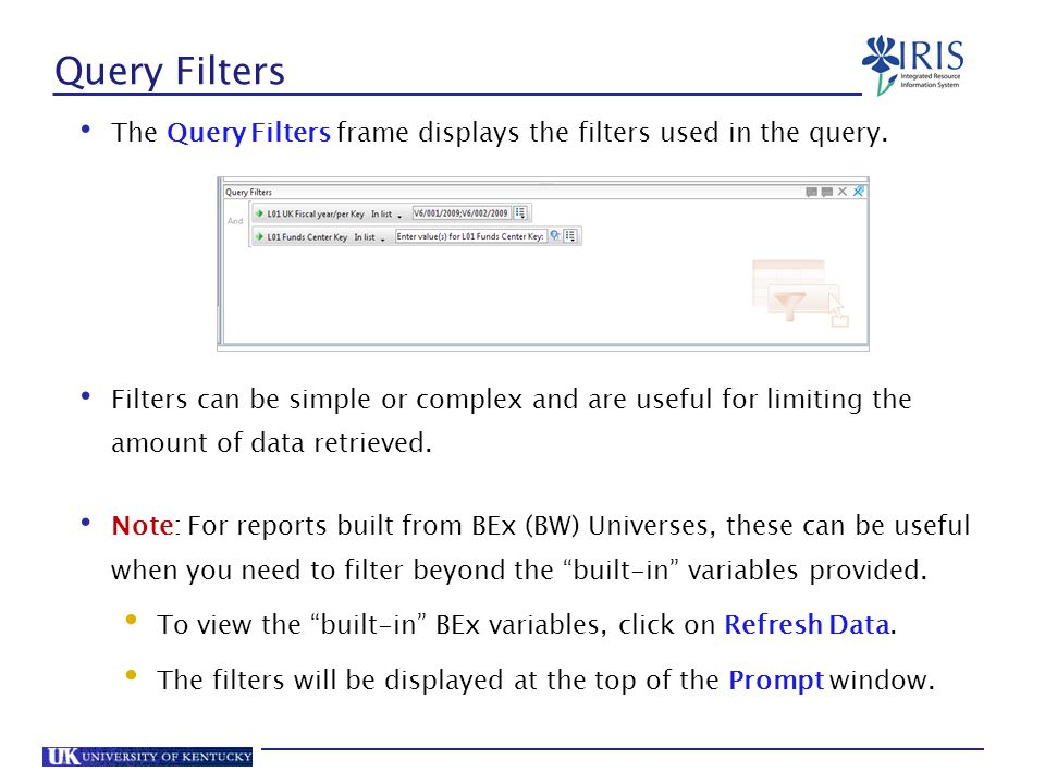 Query Filters The Query Filters frame displays the filters used in the query.