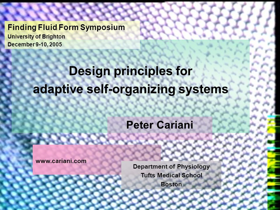 Design principles for adaptive self-organizing systems