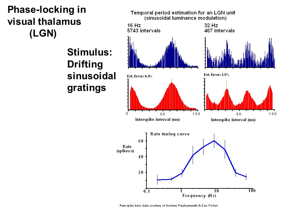 Phase-locking in visual thalamus (LGN) Stimulus: Drifting sinusoidal gratings