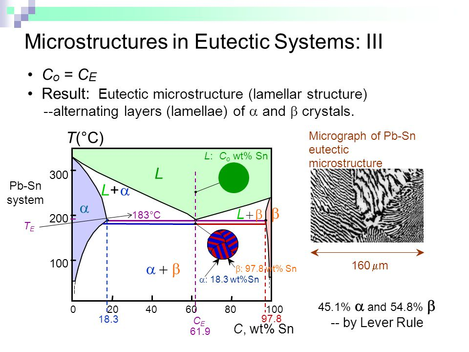 Microstructures in Eutectic Systems: III