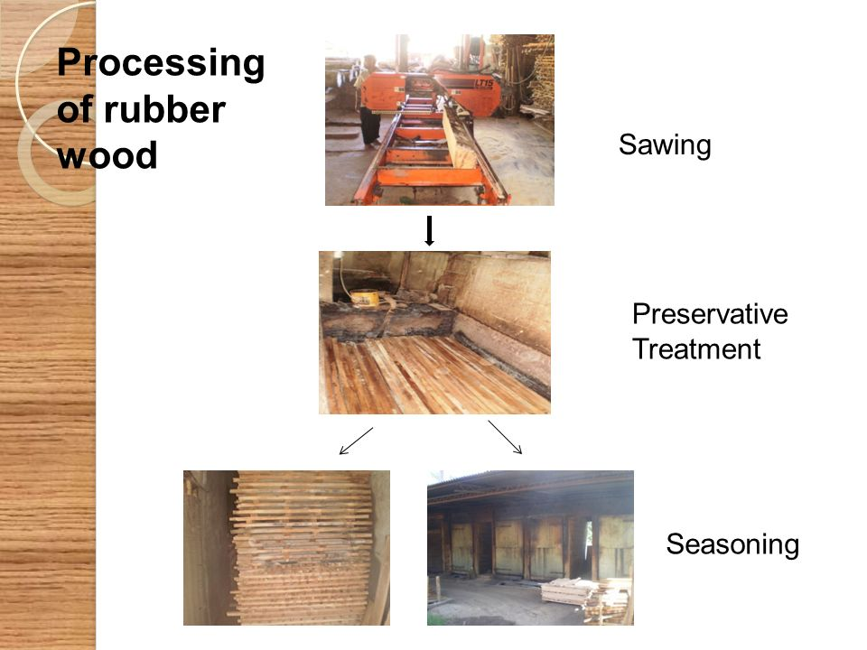Processing of rubber wood