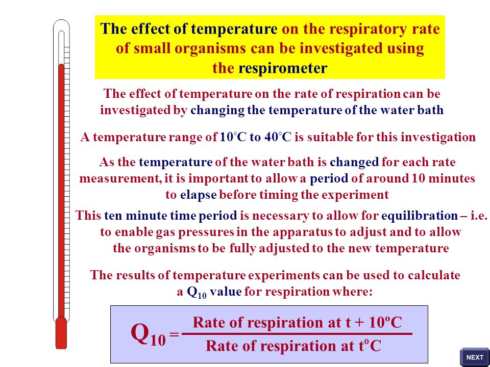 Q10 = The effect of temperature on the respiratory rate