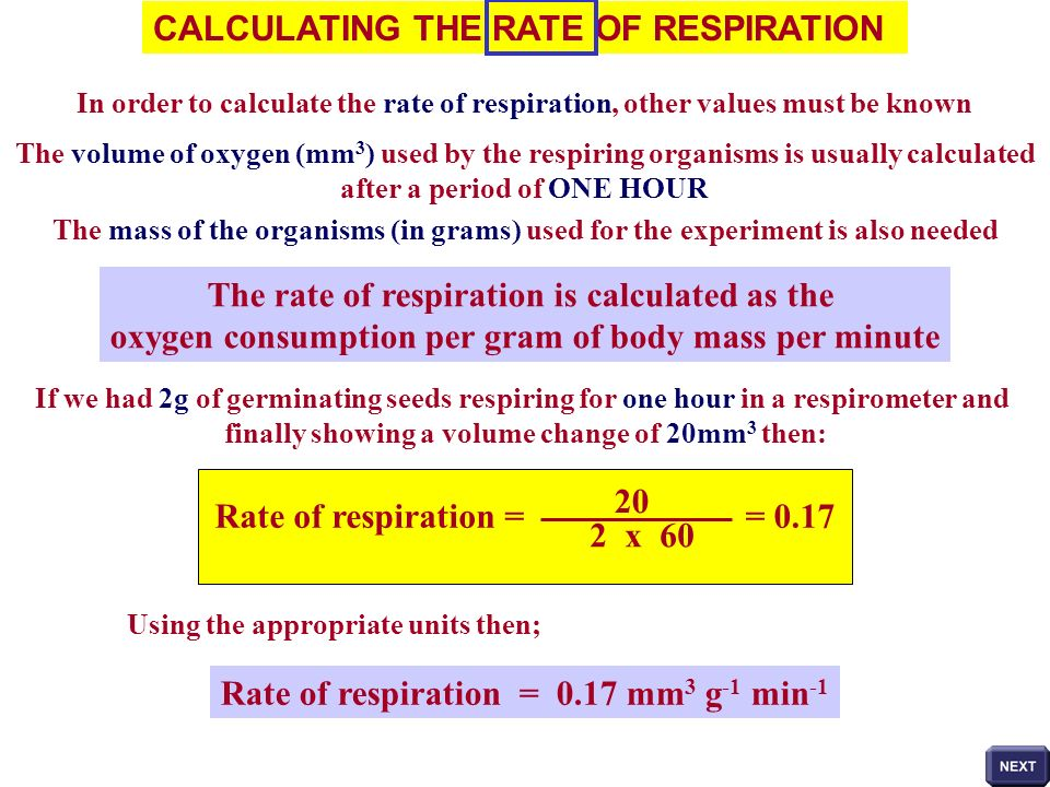 CALCULATING THE RATE OF RESPIRATION
