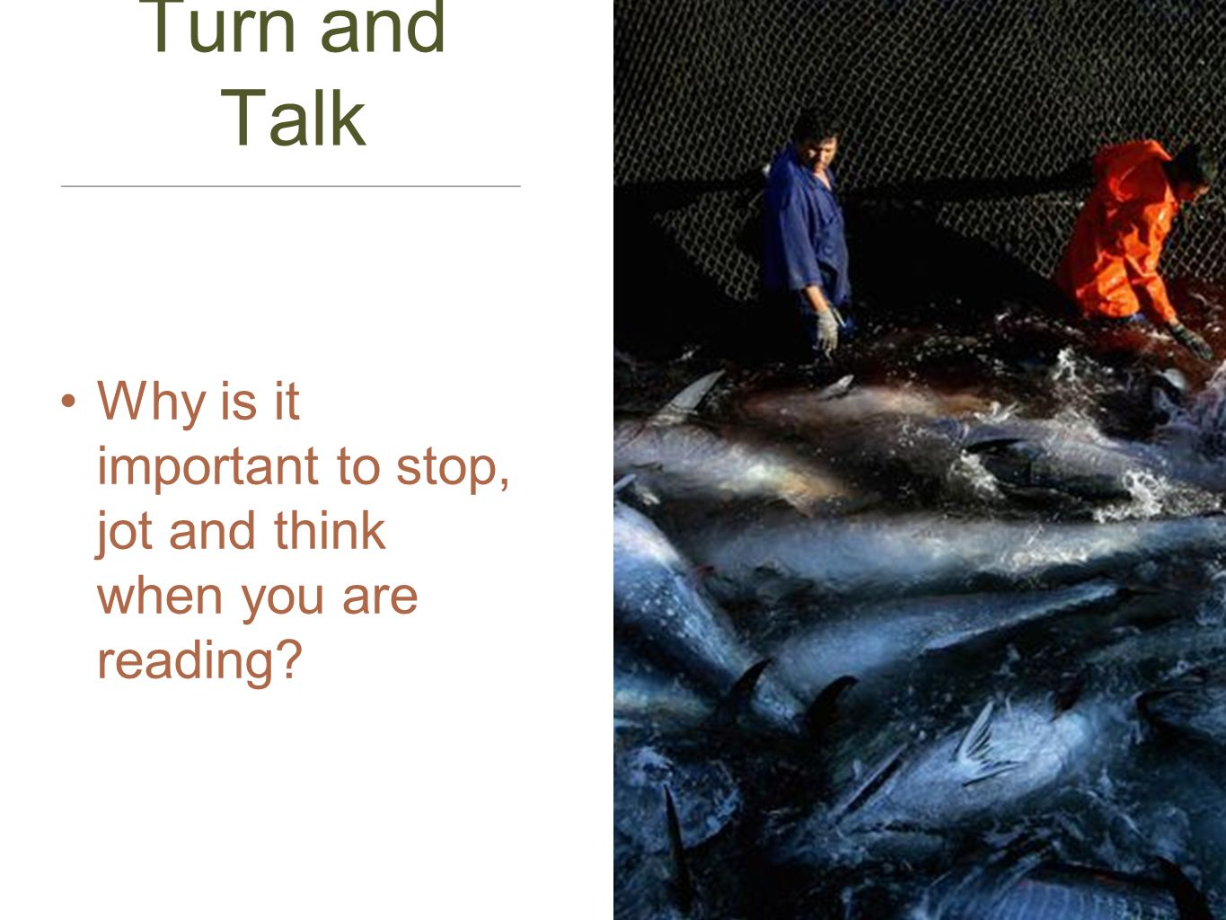 Turn and Talk Why is it important to stop, jot and think when you are reading