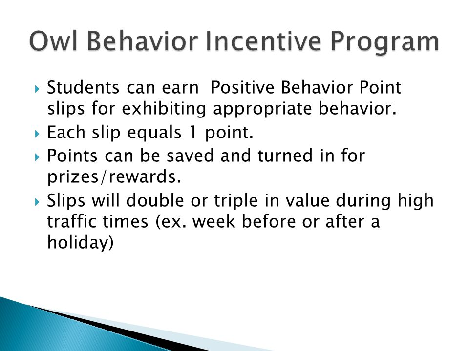Owl Behavior Incentive Program