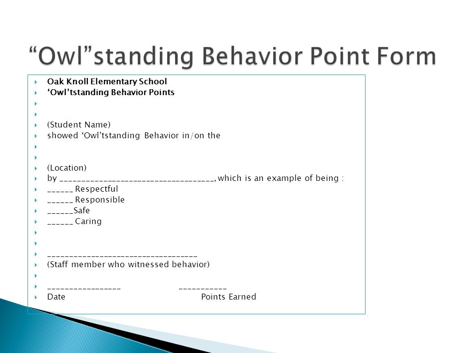 Owl standing Behavior Point Form
