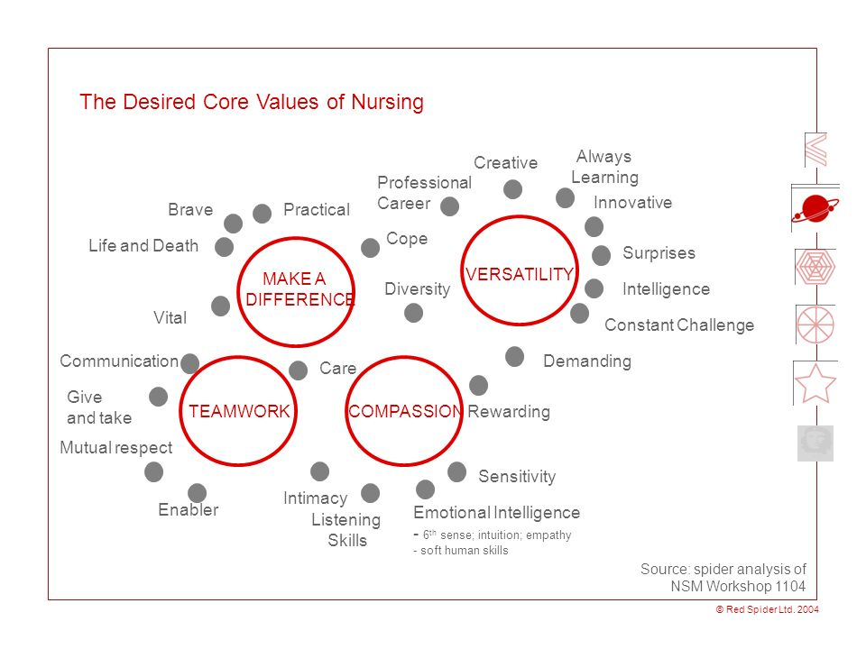 The Desired Core Values of Nursing