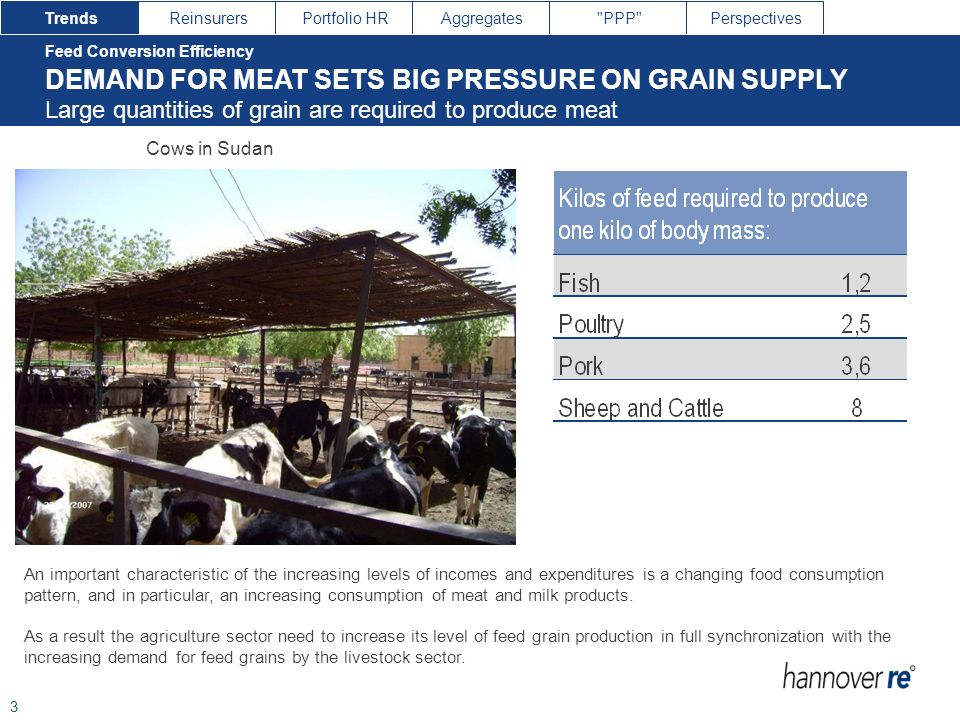 DEMAND FOR MEAT SETS BIG PRESSURE ON GRAIN SUPPLY