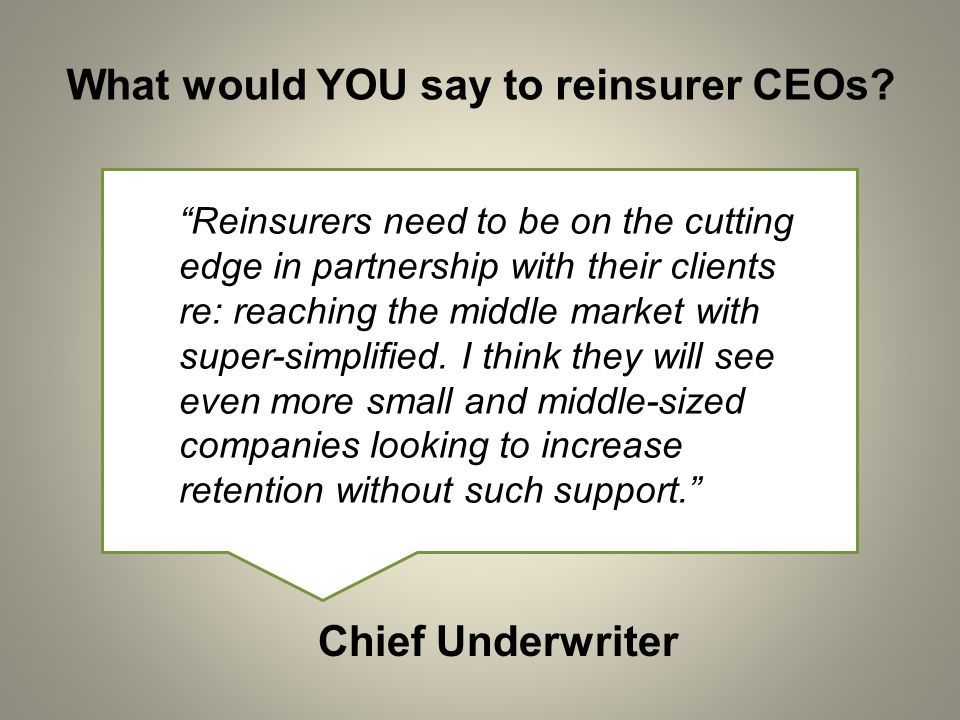 What would YOU say to reinsurer CEOs