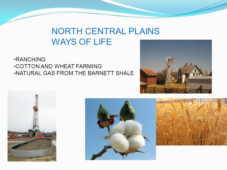 NORTH CENTRAL PLAINS WAYS OF LIFE RANCHING COTTON AND WHEAT FARMING