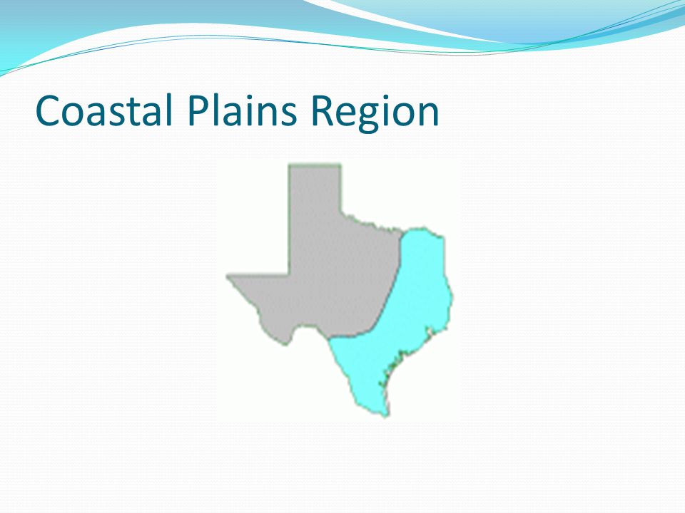 Coastal Plains Region