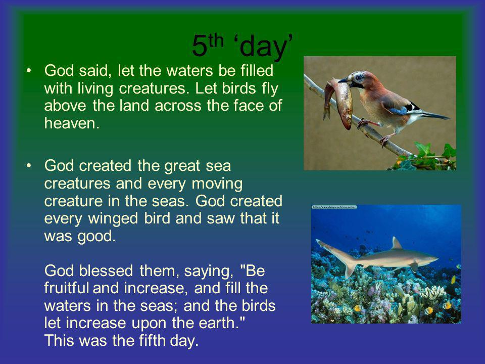 5th 'day' God said, let the waters be filled with living creatures. Let birds fly above the land across the face of heaven.