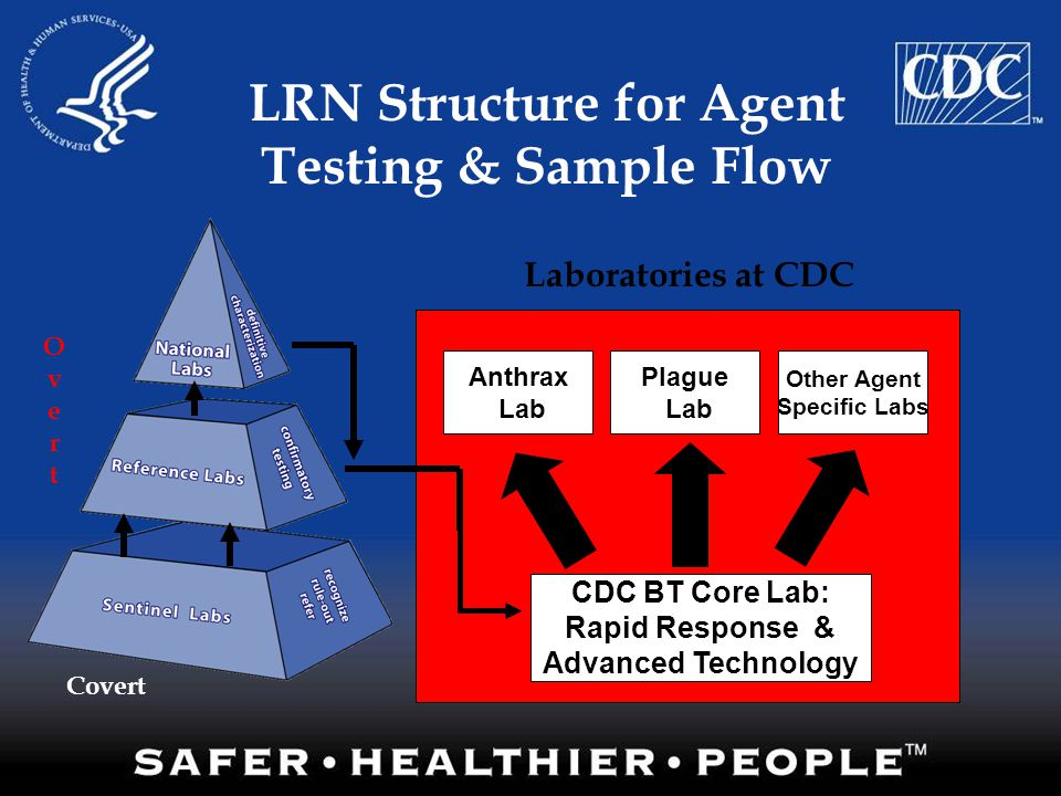 LRN Structure for Agent Testing & Sample Flow