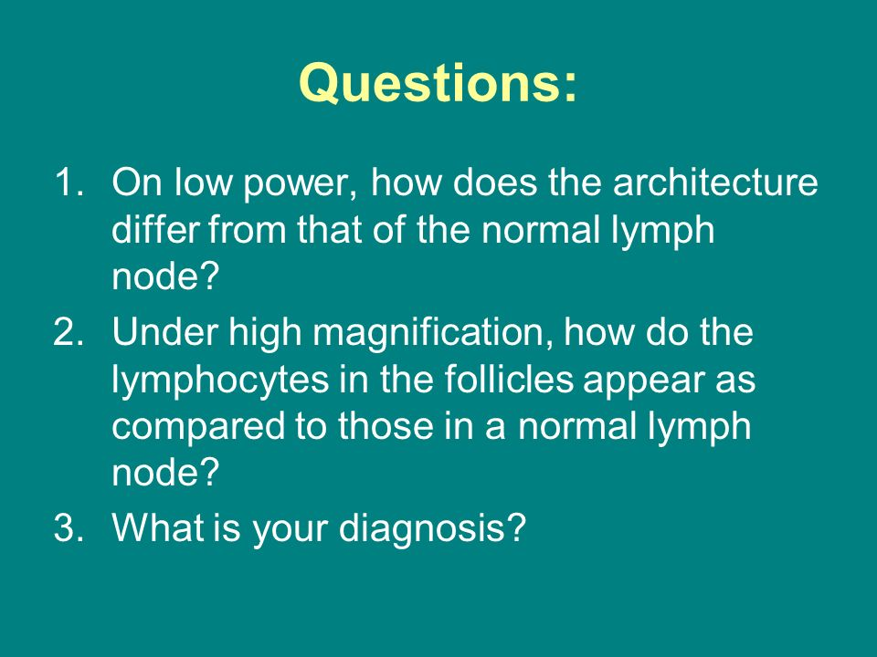 Questions: On low power, how does the architecture differ from that of the normal lymph node
