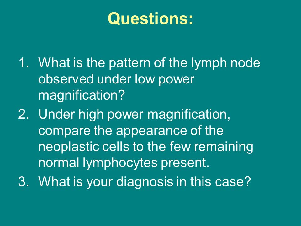 Questions: What is the pattern of the lymph node observed under low power magnification